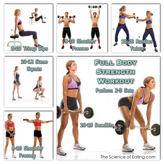 full body work out chart in gym
