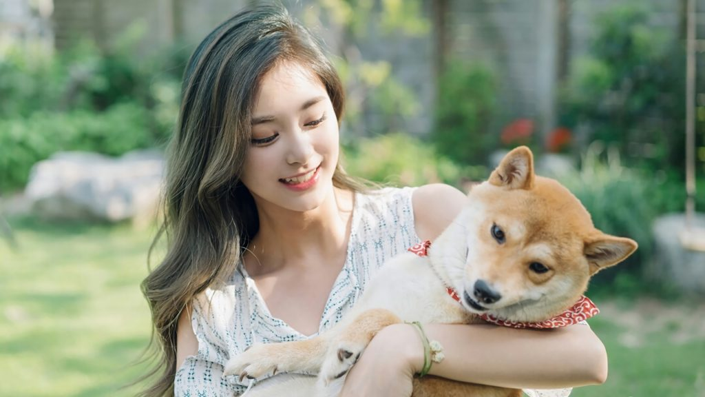 Care for Your Pet with Canna-Pet
