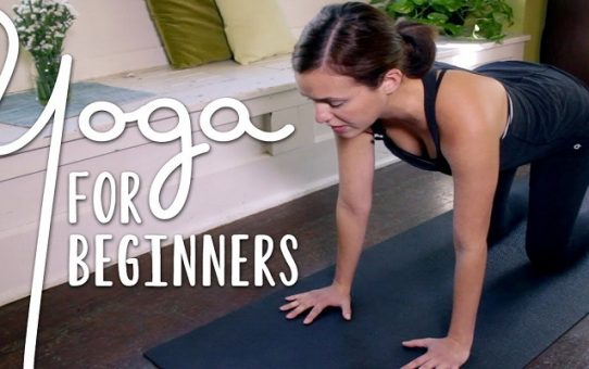 What is Yoga and Main Yoga Types for Beginners