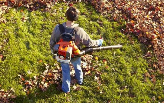 How to Use a Leaf Blower Full Guide