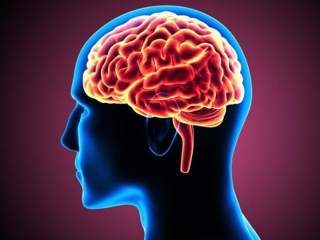 Brain Tumor – A Condition That Can Be Completely Cured in The Current Times