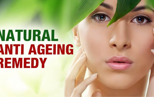 7 Verified Aloe Vera Anti-ageing Positive Aspects