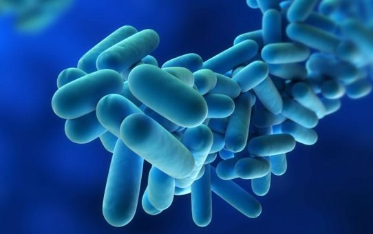 How Landlords Can Help Prevent Legionnaires Disease