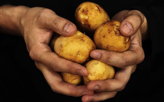 Potato Diet Rules for Weight Loss